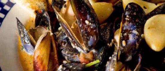 """Mighty Mussels """"El Duque"""""""